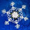 Six Spot Snowflake
