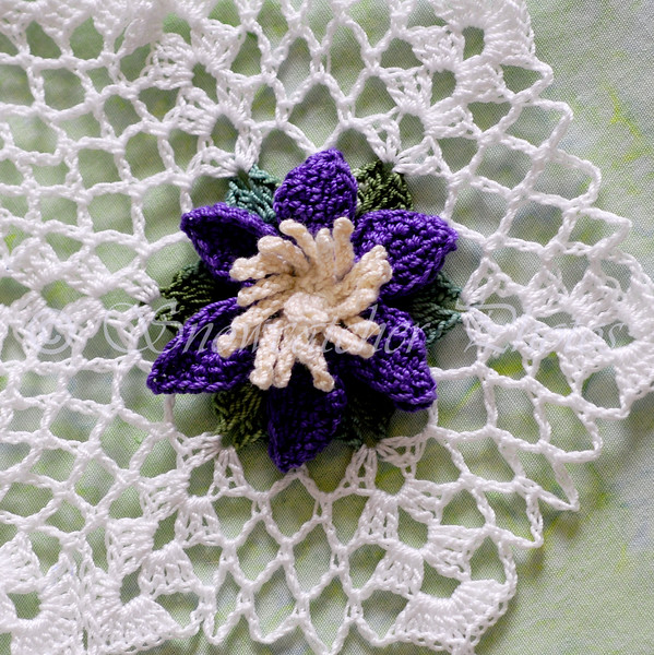 """<a href=""""http://www.snowcatcher.net/2015/09/clematis-monday.html"""" target=""""_blank"""">Clematis Snowflake</a>"""