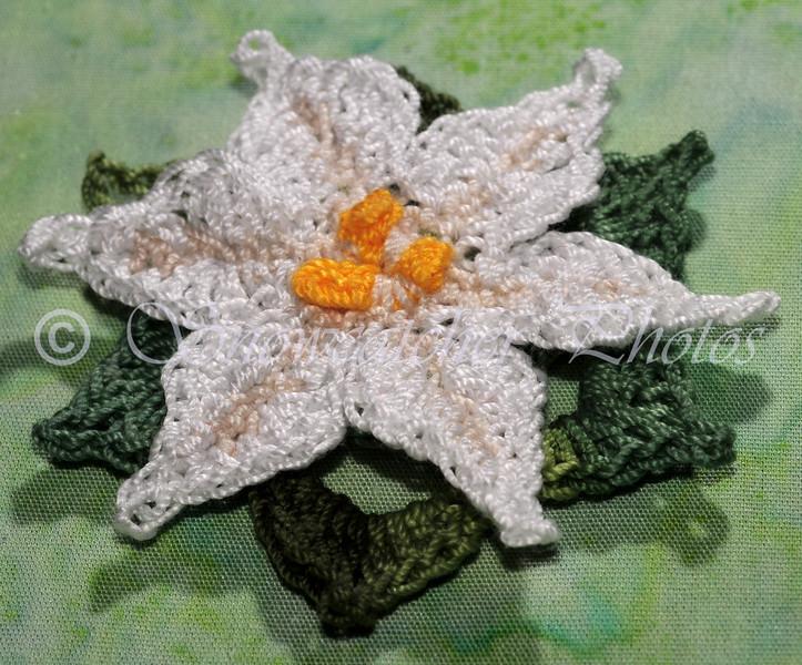 "<a href=""http://www.snowcatcher.net/2015/08/spring-star-flower-monday.html"" target=""_blank"">Spring Star Flower</a>"