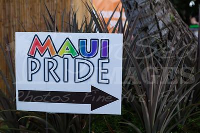 20141003_MauiPrideVIP_Glitter-11