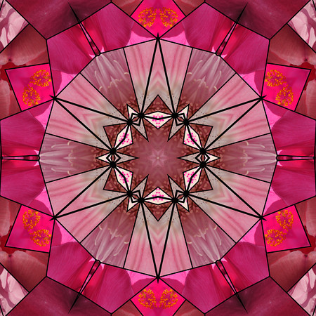 from a digital quilt collage of pink flowers