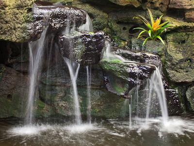 Pond waterfall #2, Sherman Gardens