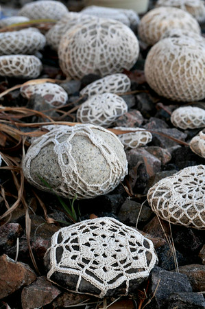 My Snowflake Rock Garden is thriving in winter!