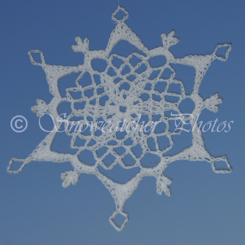 It's incredible to me that every time I take a photo of a snowflake with sky as the background, I get a shadow.  I have yet to figure out this scientific phenomena!
