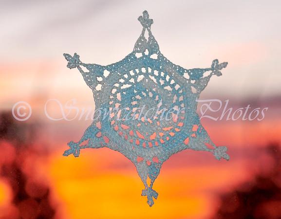 Douglas Snowflake