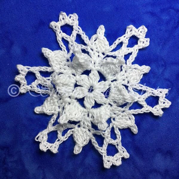 January 111th Snowflake