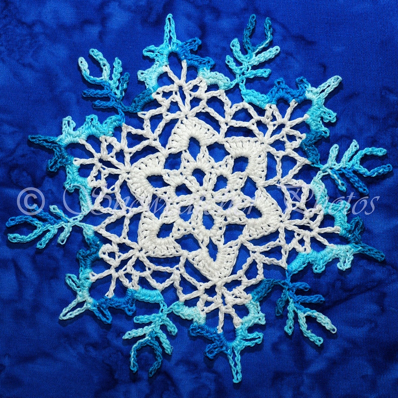 Anticipation Snowflake