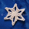 Mini Moss Snowflake Variation