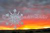 "<a href=""http://www.snowcatcher.net/2011/05/snowflake-monday_09.html"" target=""_blank"">Lost Creek Snowflake</a>"