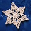 Mini Moss Snowflake