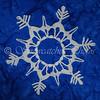 Winter Storm Iris Snowflake Frame