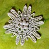 Mini Winter Storm Quiana Snowflake