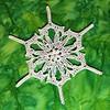 Winter Storm Quiana Snowflake