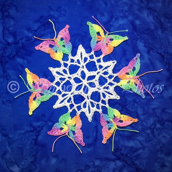 Monarch Pass Snowflake