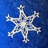 Perseid Snowflake
