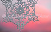 Waterton Snowflake Sunrise