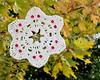 """<a href=""""http://www.snowcatcher.net/2010/10/skullflake-monday.html"""" target=""""_blank"""">Skullflake</a>"""