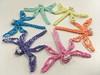 Rainbow Dragonfly Snowflake