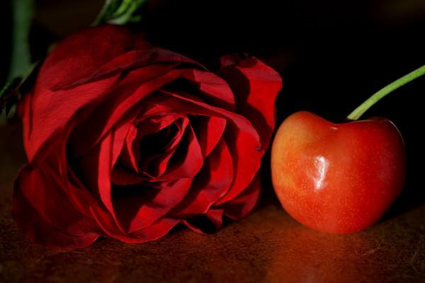 Rainier cherry with one of my anniversary roses