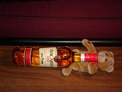Getting the bear drunk on Bacardi 151- Washington, DC ... February 3, 2006 ... Photo by Rob Page III