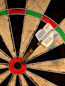 Bulls-eye! - New York, NY ... January 3, 2006 ... Photo by Rob Page III