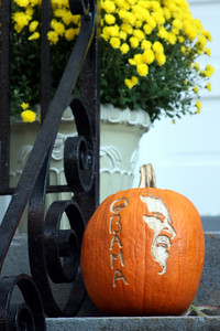 Even Halloween is a political holiday in DC - Washington, DC ... October 31, 2008 ... Photo by Rob Page III