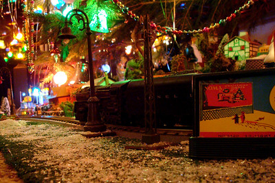The Paradise's Chistmas display - Auburn, OH ... December 21, 2008 ... Photo by Rob Page III