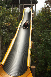 Rob heading down the slide at Saunders Farm - Ottawa, ON ... September 26, 2009 ... Photo by Heather Fairley