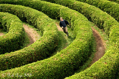 Rob in the Cedar Spiral Maze - Ottawa, ON ... September 26, 2009 ... Photo by Heather Fairley