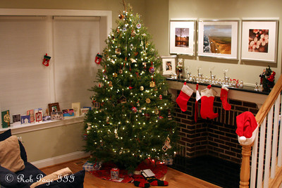 Our first Christmas in our new place - Washington, DC ... December 19, 2010 ... Photo by Rob Page III