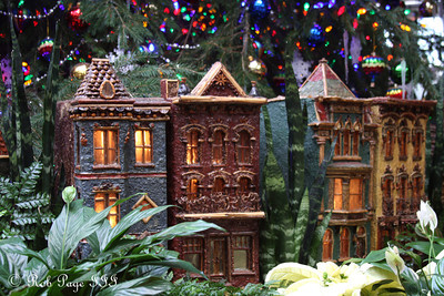 The streets of DC at the Botanical Gardens - Washington, DC ... December 31, 2011 ... Photo by Rob Page III