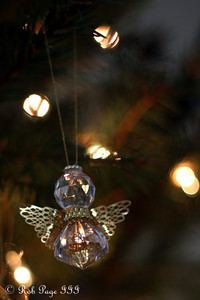 An ornament - Washington, DC ... December 28, 2011 ... Photo by Rob Page III