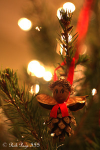 A nestled pine-cone - Washington, DC ... December 27, 2011 ... Photo by Rob Page III