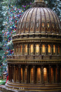 The Capitol at the Botanical Gardens - Washington, DC ... December 31, 2011 ... Photo by Rob Page III