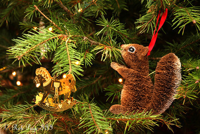 Christmas Ornaments - Washington, DC ... December 3, 2011 ... Photo by Rob Page III