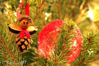 Christmas - Washington, DC ... December 11, 2011 ... Photo by Rob Page III