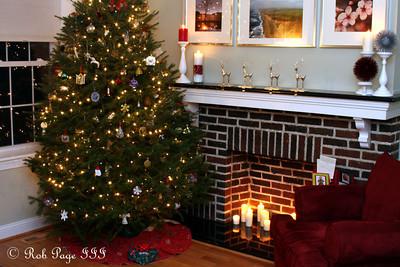 The Christmas Tree - Washington, DC ... December 11, 2011 ... Photo by Rob Page III
