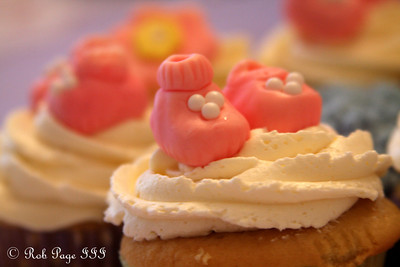 Emily's delicious creations for Heather's baby shower - Chalfont, PA ... April 7, 2012 ... Photo by Rob Page III