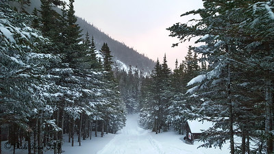 The fire trail above the Harvard Cabin - White Mountain National Forest, NH ... January 28, 2017 ... Photo by Rob Page III