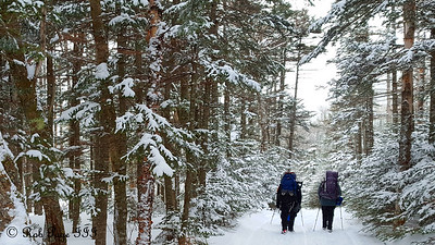Heather and Dad hiking down to Pinkahm Notch - White Mountain National Forest, NH ... January 29, 2017 ... Photo by Rob Page III