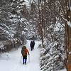 Heading back to Pinkham Notch - White Mountain National Forest, NH ... January 29, 2017 ... Photo by Rob Page III