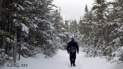 Scott wanders through the forest - White Mountain National Forest, NH ... January 28, 2017 ... Photo by Rob Page III