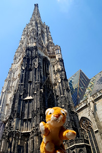 Tora take in the St. Stephen's Cathedral - Vienna, Austria ... June 3, 2017 ... Photo by Rob Page III