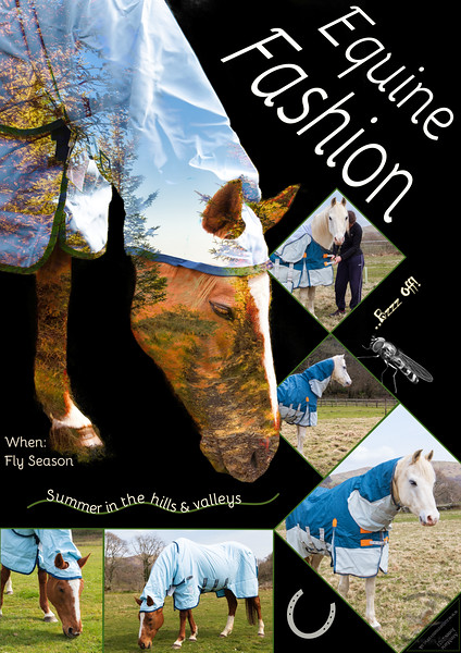 Equine Fashion Poster