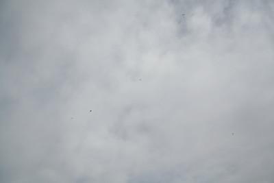 skydive_047