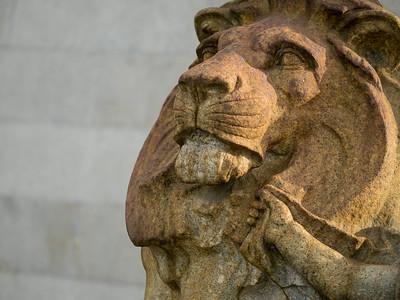 The lion (kwanghui)