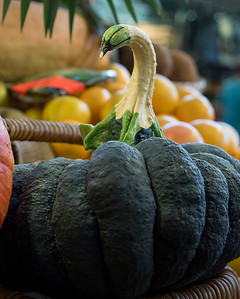 Black swan or pumpkin?