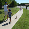 walking the dogs (7.6.08)