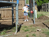 Owen, in his pajamas, assists in the reconstruction of the backyard fence (August 11, 2007).