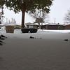 First snow (11.17.14)